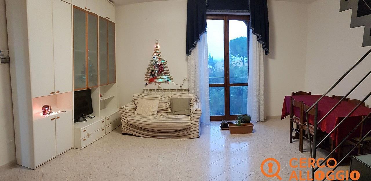 Copertina annuncio affitto in Pisa